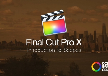 Understanding the Scopes for Final Cut X / Premiere Pro